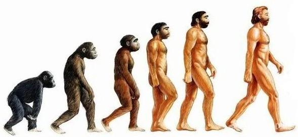 Антропогенез человека