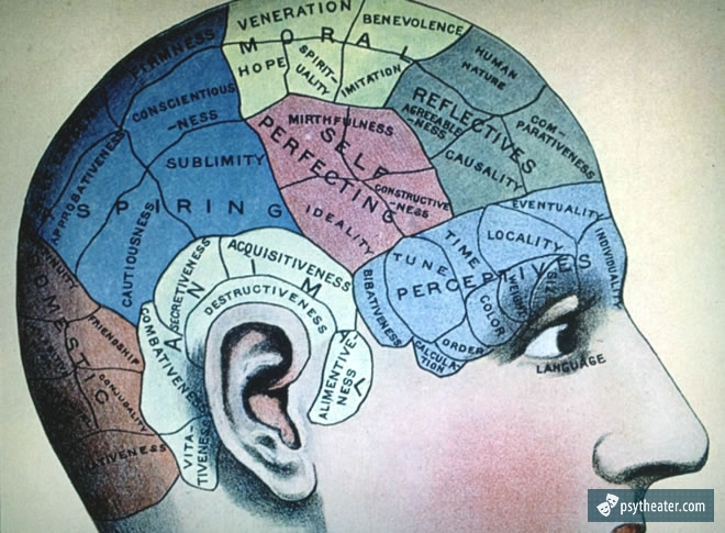 Человеческий интеллект 1