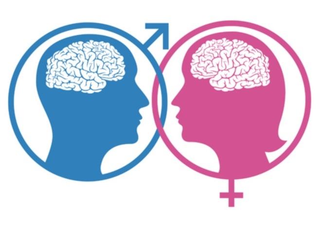 Гендерное поведение в сексе