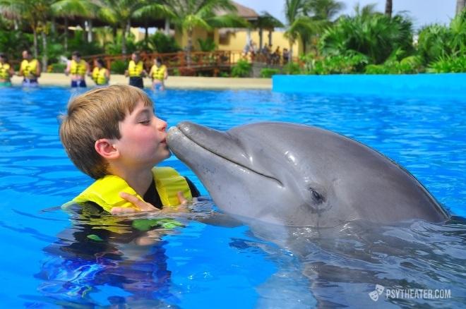 Метод дельфинотерапии