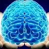 Сознание и человек